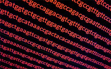 複合的データを解析するためのツール・アルゴリズム開発